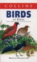 Woodcock, Heinzel: Birds of India -