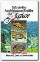 Goris, Maeda : Guide to the Amphibians and Reptiles of Japan :