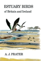 Prater : Estuary Birds of Britain and Ireland :