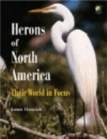 Hancock : Herons of North America :
