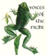 CLO : Voices of the Night :