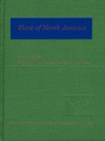 Flora of North America Editiorial Committee : Flora of North America and North of Mexico : Volume 26: Magnoliophyta: Liliidae: Liliales and Orchidales
