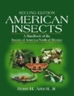 Arnett : American Insects : A Handbook of the Insects of America North of Mexico