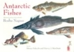 Fukuchi, Marchant (Text); Nagase (Illustr.) : Antarctic Fishes :