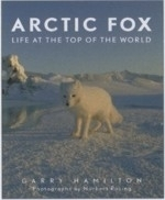 Hamilton : Arctic Fox : Life at the Top of the World