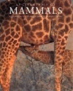 Gould, McKay : Encyclopedia of Mammals :