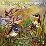Roché, Chevereau : Robin, Redstarts and Related Species : Rougegorge, Rougequeues & Cie