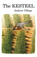 Village; Illustr.: Brockie : The Kestrel :