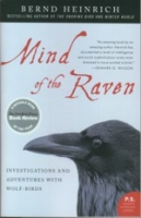 Heinrich : Mind of the Raven : Investigations and Adventures with Wolf-Birds