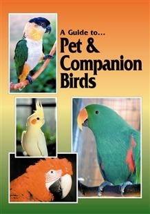 Dorge, Sibley: A Guide to Pet and Companion Birds