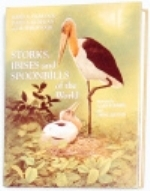 Hancock. Kushlan, Kahl : Storks, Ibises and Spoonbills of the World :