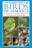 Downer, Sutton, Haynes Sutton : A Photographic Guide to the Birds of Jamaica