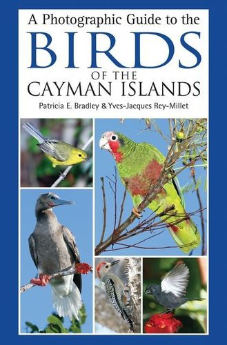 Bradley, Rey-Millet: A Photographic Guide to the Birds of the Cayman Islands