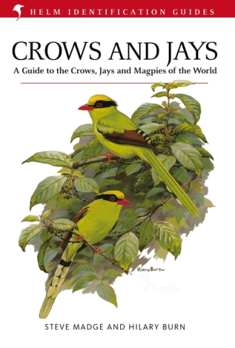 Madge, Burn : Crows and Jays : A Guide to the Crows, Jays and Magpies of the World