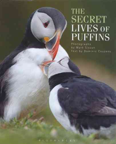 Sisson (Fotos), Couzens (Text): The Secret Lives of Puffins