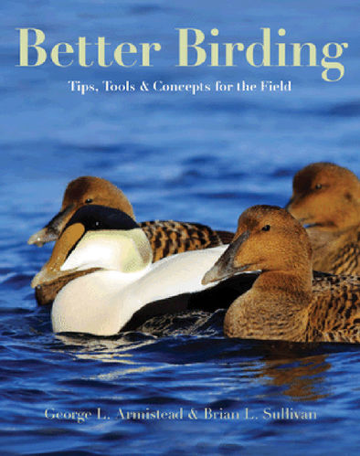 Arminstead, Sullivan: Better Birding - Tips, Tools, and Concepts for the Field