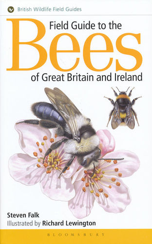 Falk, Lewington: Field Guide to the Bees of Great Britain and Ireland