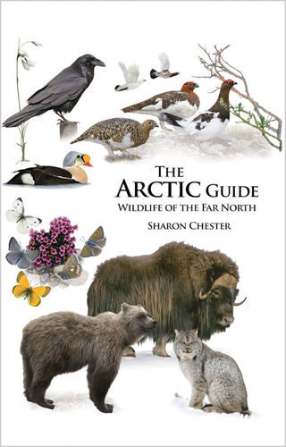 Chester: The Arctic Guide - Wildlife of the Far North