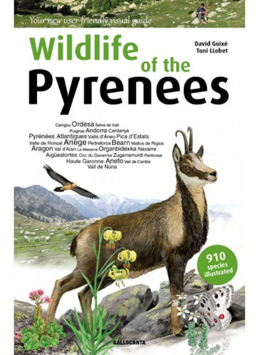 Guixé (Autor), Llobet (Illustrator): Wildlife of the Pyrenees