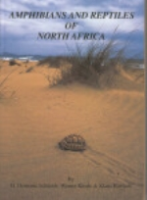 Schleich, Kästle, Kabisch: Amphibians and Reptiles of North Africa