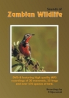 Stjernstedt : Sounds of Zambian Wildlife :