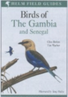 Barlow, Wacher, Illustr.: Disley: Field Guide to the Birds of The Gambia and Senegal