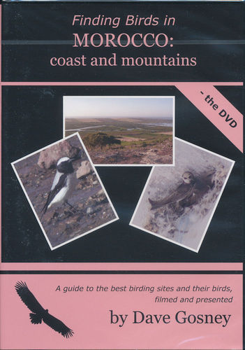 Gosney: Finding Birds in Morocco - coast and mountains - the DVD
