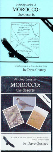 Gosney: Finding Birds in Morocco - the deserts - book + DVD