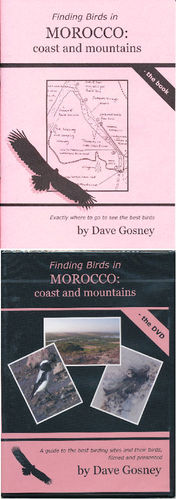Gosney: Finding Birds in Morocco - coast and mountains - book + DVD