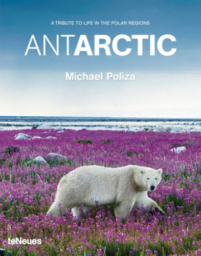 Poliza: Antarctic - A tribute to the Life in the Polar Regions