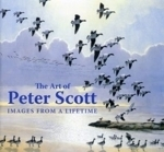 Scott, Scott, Shackleton: The Art of Peter Scott - Images from a Lifetime
