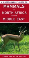 Stuart, Stuart : Photographic Guide to Mammals of North Africa and the Middle East :