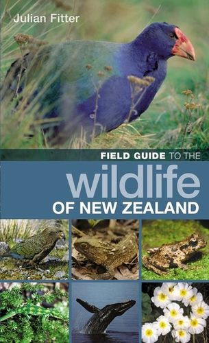 Fitter: Field Guide to the Wildlife of New Zealand