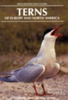 Malling Olsen, Larsson: Terns of Europe and North America