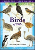 Jaramillo: Field Guide to the Birds of Chile