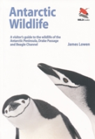 Lowen : Antarctic Wildlife : A vistor's guide to the wildlife of the Antarctic Peninsula, Drake Passage and Beagle Channel
