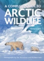 Sale : A Complete Guide to Arctic Wildlife :