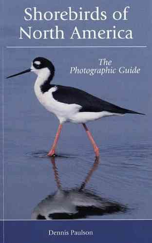Paulson: Shorebirds of North America - The Photographic Guide