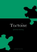 Young : Tortoise :