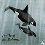Roché : Songs from the Deep : Le Chant des Baleines
