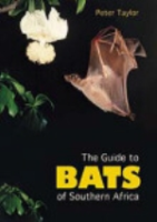 Taylor : The Guide to Bats of Southern Africa : A Handbook on Biology, Identification and Conservation