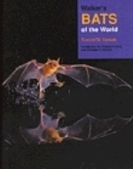 Nowak : Walker's Bats of the World :