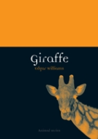 Williams : Giraffe :