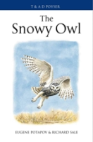 Potapov, Sale : The Snowy Owl :