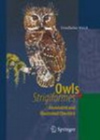 Weick : Owls (Strigiformes) : Annotated and Illustrated Checklist