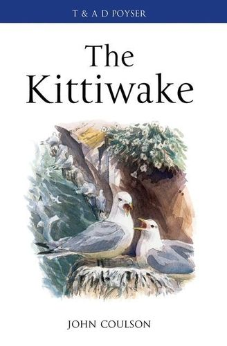 Coulson : The Kittiwake :