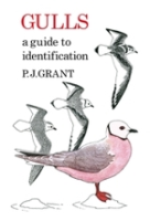 Grant : Gulls : A Guide to Identification
