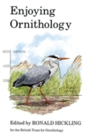 Hickling : Enjoying Ornithology :
