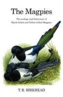 Birkhead; Illustr.: Quinn : The Magpies : The Ecology and Behavioural of Black-Billed and Yellow-Billed Magpies