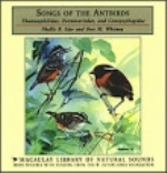Isler, Whitney : Songs of the Antbirds : Thamnophilidae, Formicaridae, and Canopophagidae